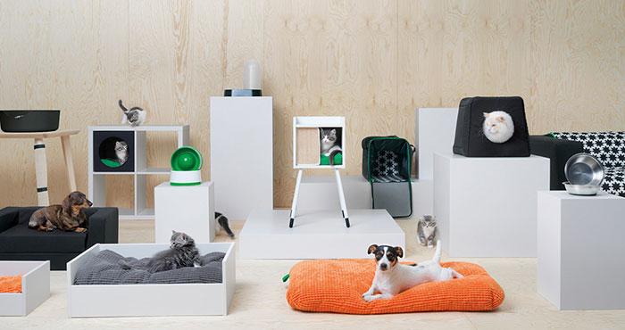 Życie jest piękne. IKEA wypuściła kolekcję dla zwierząt!