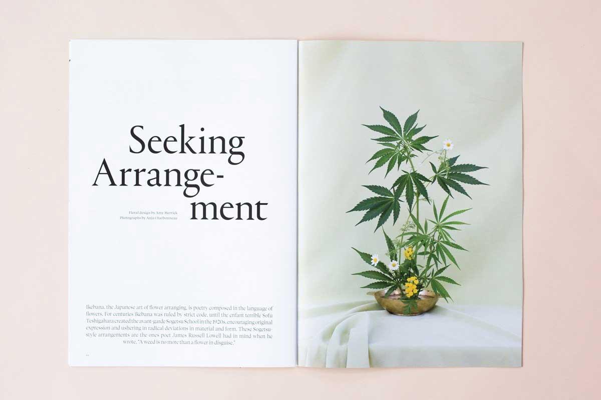 """Powstał magazyn dla """"inteligentnych kobiet, które kochają marihuanę"""""""