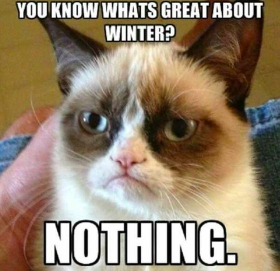 Mróz, śnieg, ciemność. Zima w pełni, a oto nasze ulubione memy z nią związane!
