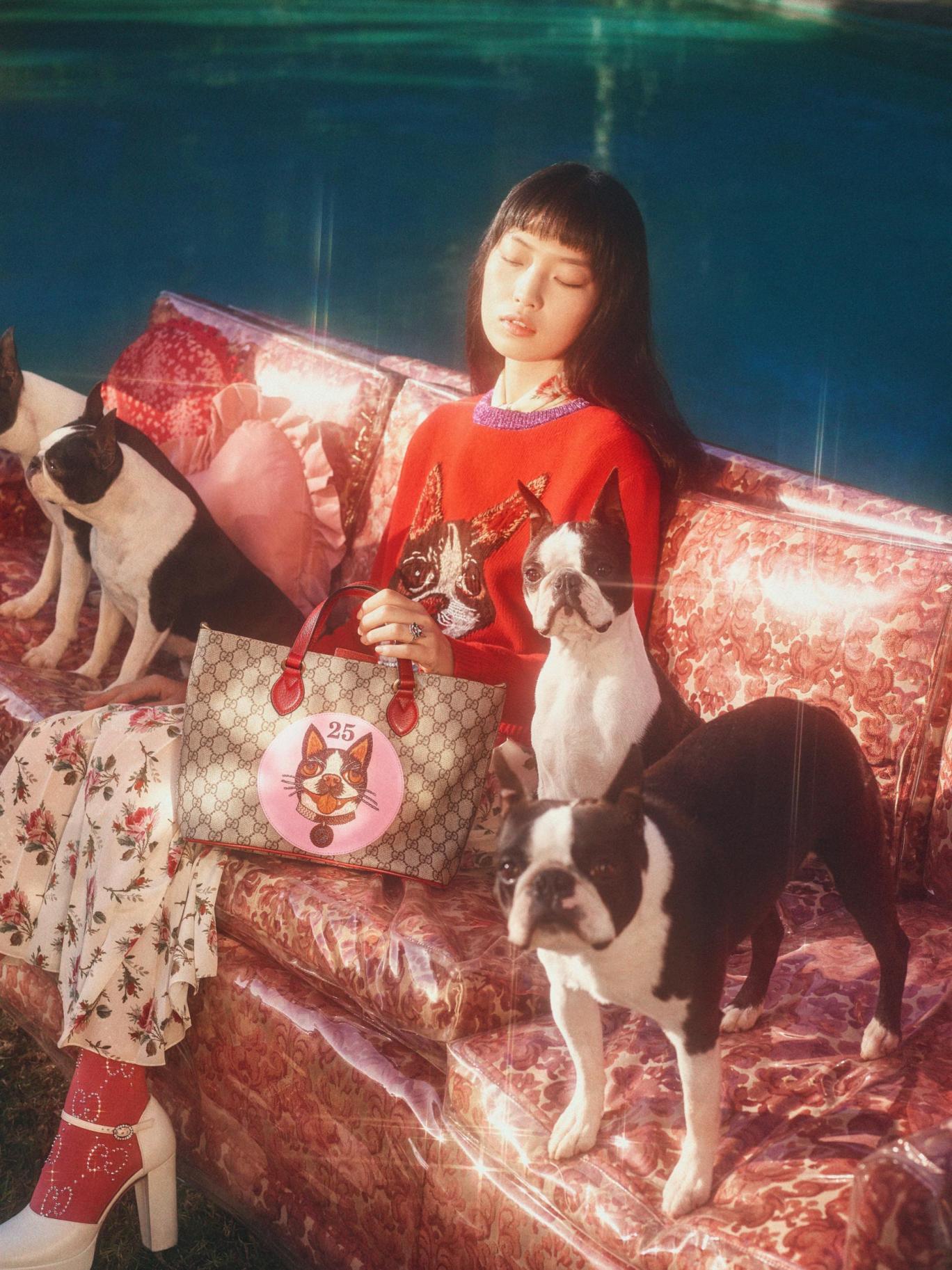 Gucci stworzyło kolekcję dla każdego fana psów
